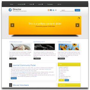 Director Joomla Business Template