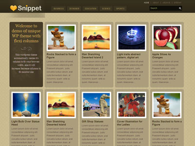 Snippet WordPress Magazine Theme