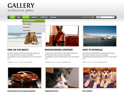 Gallery 2.1 WordPress Product Reviews Theme