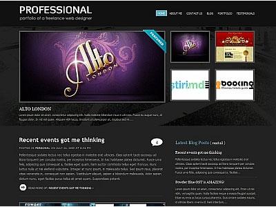 Professional 1.3 WordPress Portfolio Theme