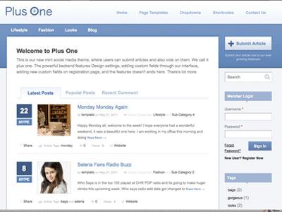PlusOne WordPress Voting Theme