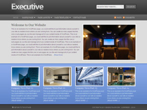Executive Child Wordpress Corporate Theme