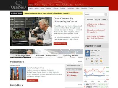 Syndicate WordPress News Theme