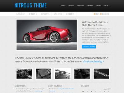 Nitrous 1.0 Child WordPress Theme