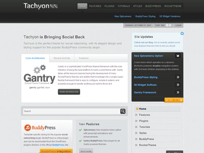 Tachyon WordPress Social Networking Theme
