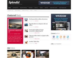 Splendid Wordpress Magazine Style Theme