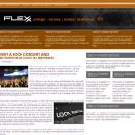 Flexx Orange Wordpress Theme