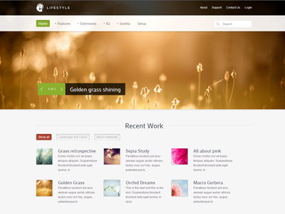 Lifestyle Joomla Photography Template