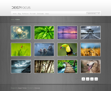 DeepFocus WordPress Photography Theme