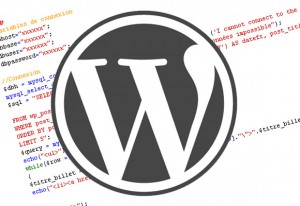 WordPress Expert Advice