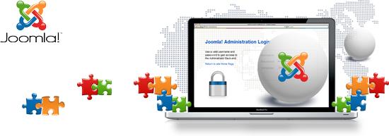Joomla Business
