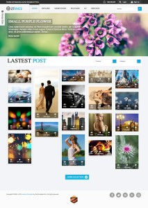 ZT Ence – Joomla Grid Based Photo / Imagery Template