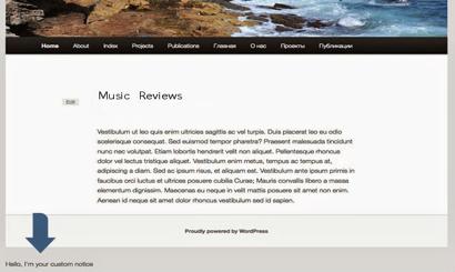 WP Music Review Plugin