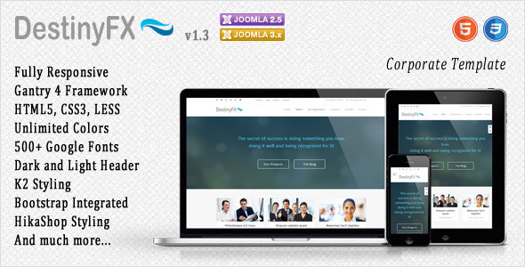DestinyFX Amazing Corporate Joomla Template