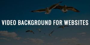 6 Tips On Using Background Videos In Web Designs