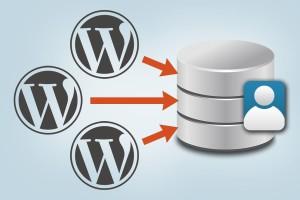 Multiple WordPress Installations