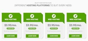 BT Hosting Joomla Template - Hosting Plan Pricing Table