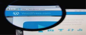 Premium WordPress Themes Against Free WordPress Themes