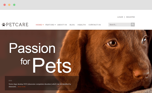 Petcare Blog Magazine Joomla Template