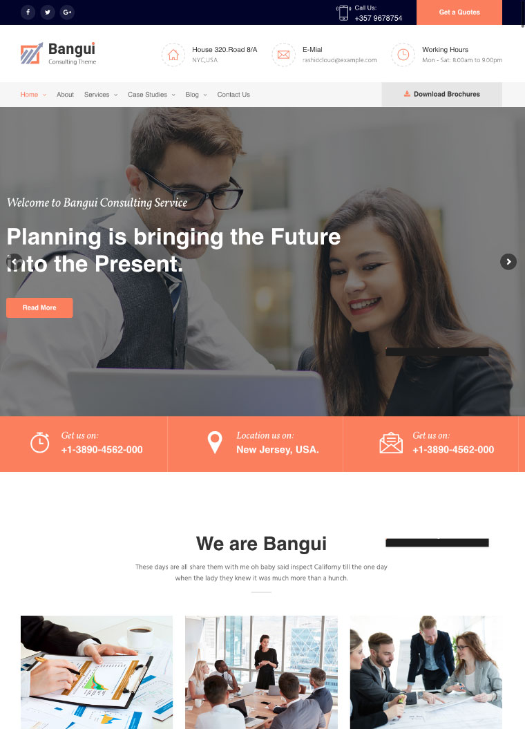 Bangui-Business-Consulting-WordPress-theme