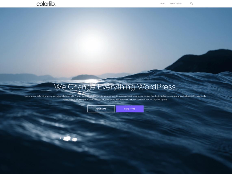 Shapely Free WordPress Portfolio Theme