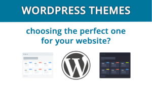 Tips to Choose the Perfect WordPress Theme for Your Site